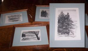 collection of prints framed.